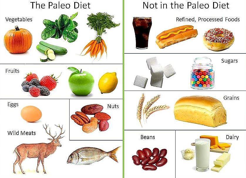 dieta paleo alimentos que no se deben consumir
