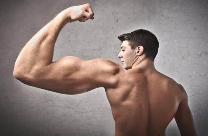 masa muscular localizada