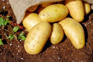 papas-o-patatas