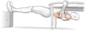 remo-invertido-musculos
