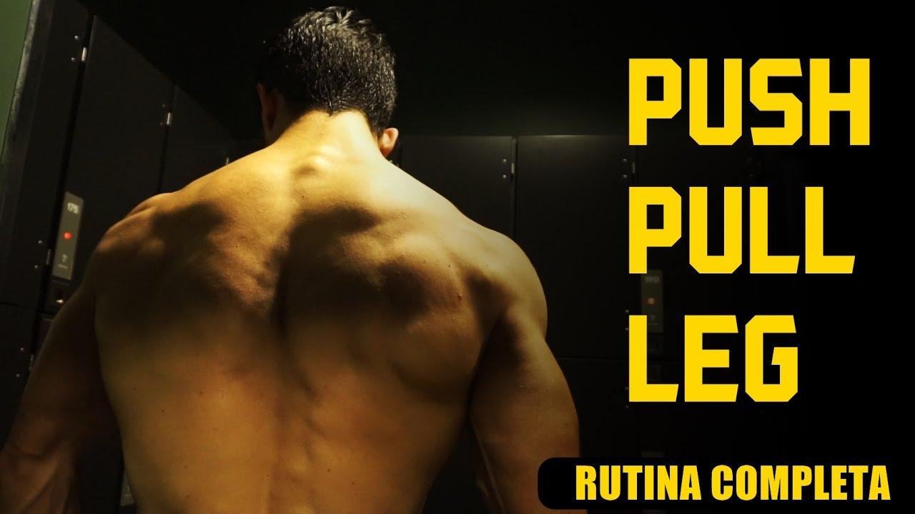 Rutina Push Pull Leg